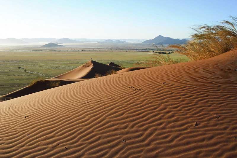 Desert kalahari