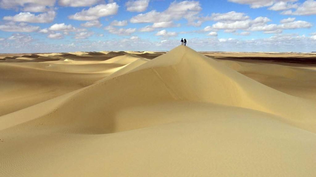 Desert sandy
