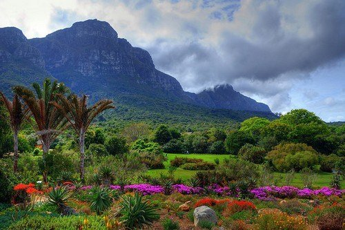 Kirstenbosch-Cape-Town-South-Africa