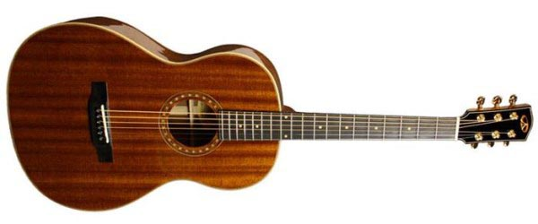Acoustic Guitars musical instrument