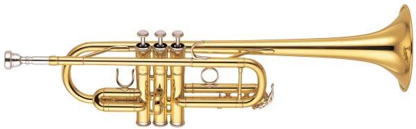 Trumpets musical instrument