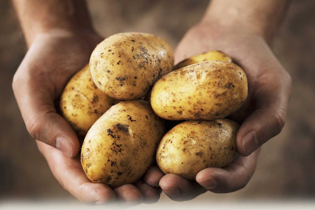 Potatoes with Skins