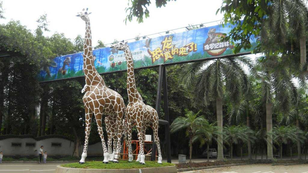 10 Best Zoo to Visit