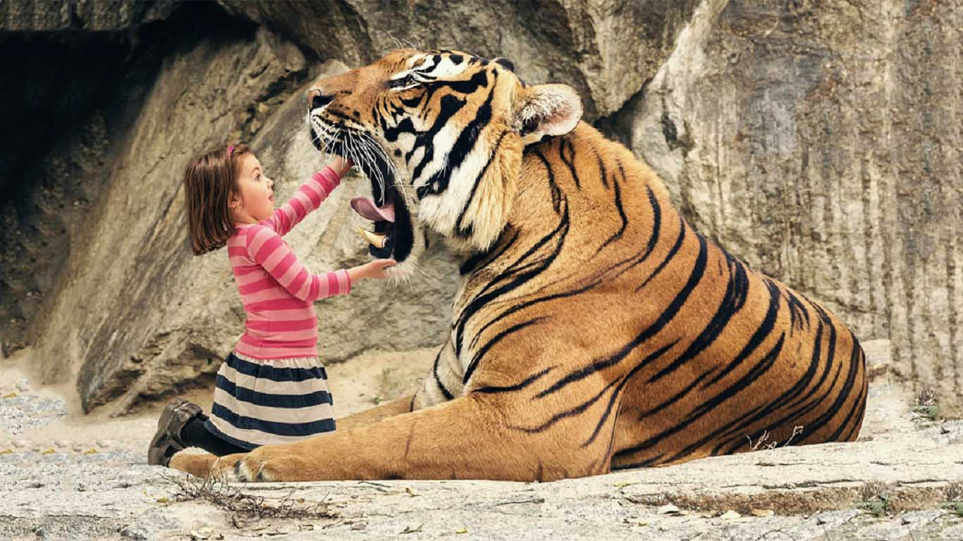 15 Facts About Tigers