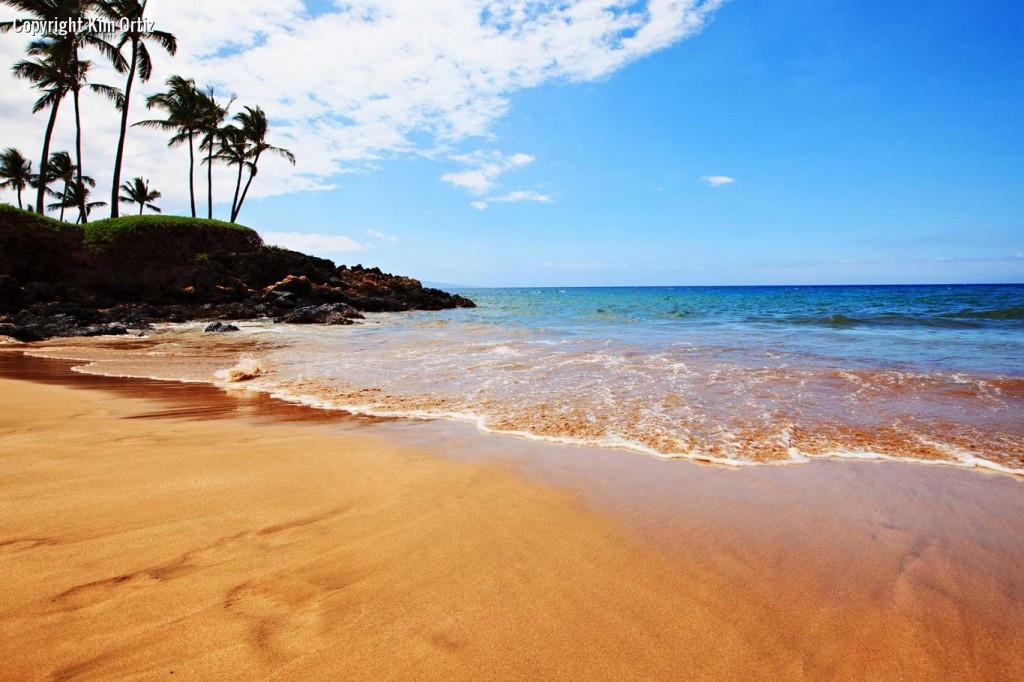 10 Best places to visit in usa maui beaches