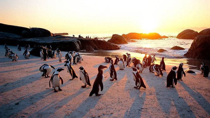 Top Ten Most Beautiful Countries In The World south-african